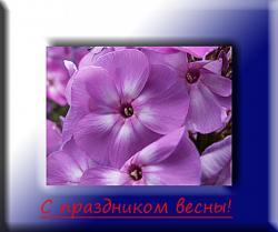 post-8942-0-81165600-1331148544_thumb.jp
