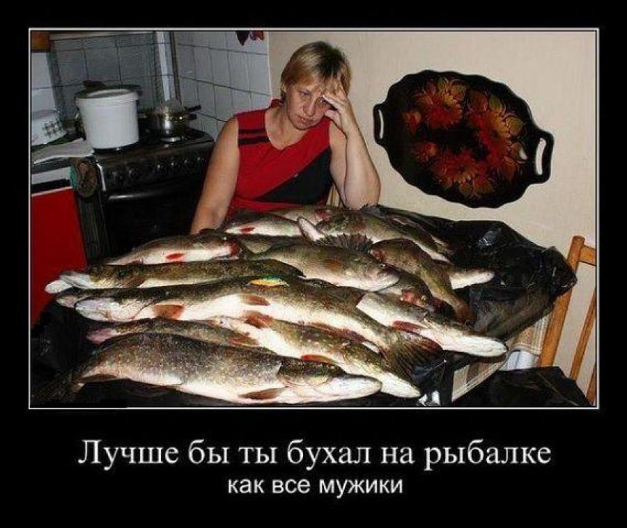 отпустить ли на рыбалку