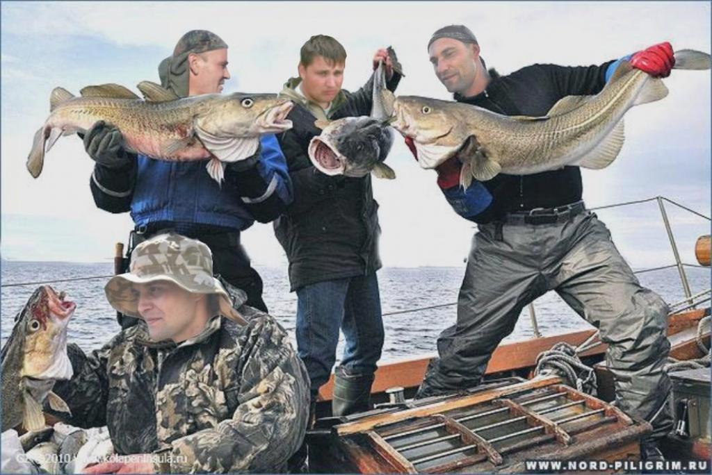друзья по интересам рыбалка