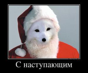 50788863_s-novyim-godom-rossiya-vot-myi-nakonets-i-vstretilis.jpg