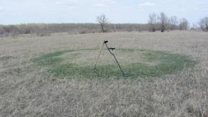Круг на поле.jpg