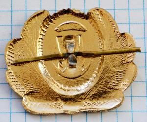 DSC_4816 (Custom).JPG