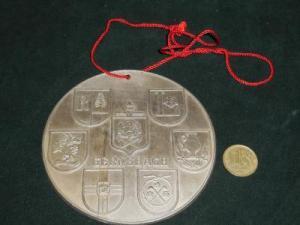 znak_znachok_medal_orden_frachnik_gerb_goroda_flag_strany_original_s_rublja_za_rubl_54.jpg