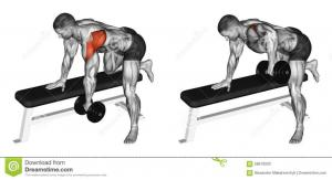 exercising-thrust-dumbbells-slope-rear-deltoid-bodybuilding-target-muscles-marked-red-initial-final-steps-58670933.jpg