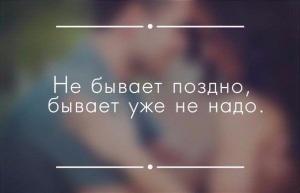 12041387.jpg