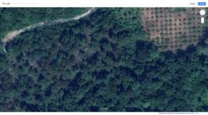 Screenshot_2019-06-17 Google Maps.jpg